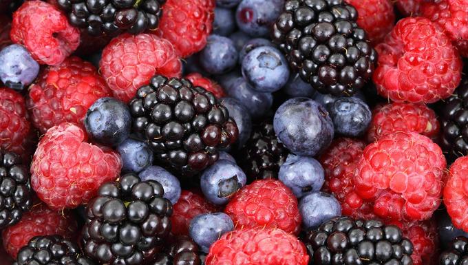 dunkle Beeren-heimische Superfoods