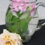 Gurken-Minz-Wasser